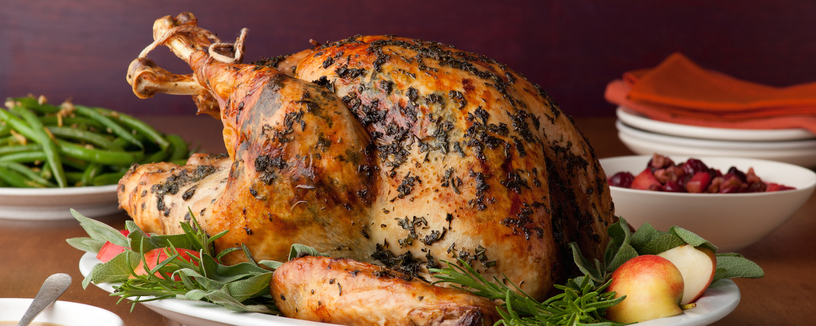 Thanksgiving-2011_LR0409-brined-herb-turkey_s4x3